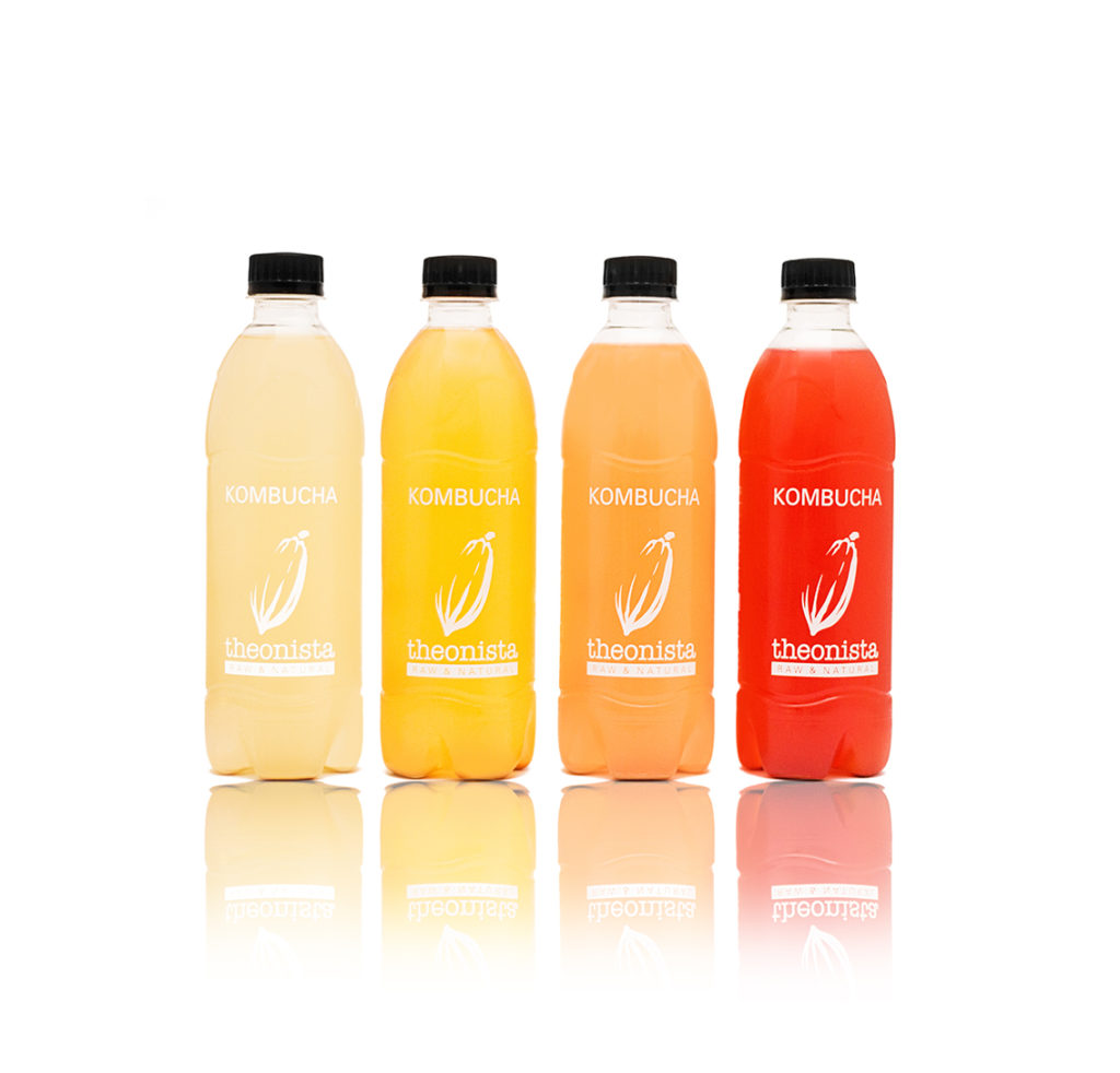 Kombucha Group of 4 500ml - Assorted Flavours
